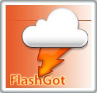 FlashGot for Firefox