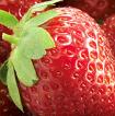 Fresh Fruit theme