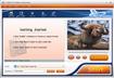 CXBSoft FLV Video Converter