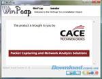 Npcap (Winpcap)