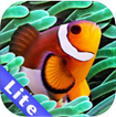 Colorful Aquarium for iPad Lite