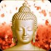 Đức Phật hình nền động cho Android