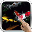 Magic Touch: Koi Fish cho Android