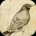 Sketch Master cho iOS