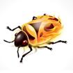 Firebug Lite for Google Chrome
