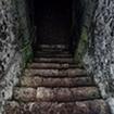 Dungeon Stalker FREE cho Windows Phone