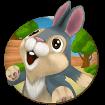 Bunny Run cho Android