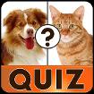 English Vocabulary Quiz cho Android