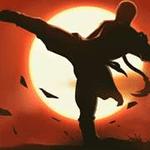 Kungfu Shadow Fighting