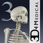 Essential Skeleton 3 cho Android