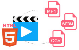 Any Video Converter Pro supports HTML 5