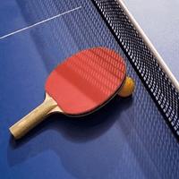 World Tour: Classic Table Tennis