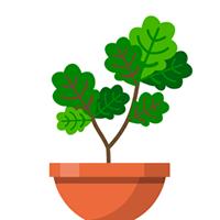 Terrarium cho iOS
