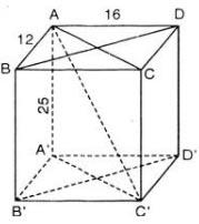 Bài 10