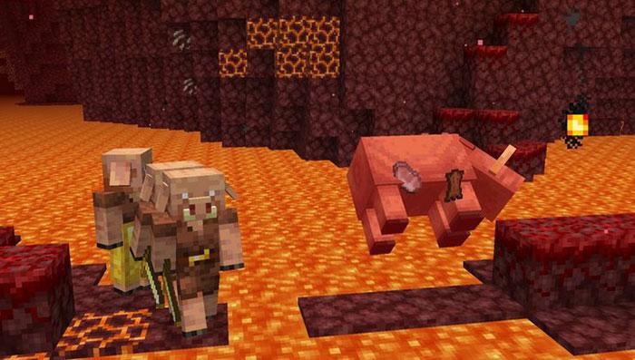 Xây dựng nông trại Hoglin để thu thập thịt lợn